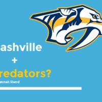 Nashville Predators_Success in the South.pdf